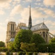 Notre Dame de Paris. — Stock Photo #2188364