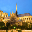 Notre Dame de Paris. Evening view. - Stock Photo