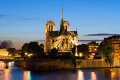 Notre Dame de Paris. Night view. — Stock Photo