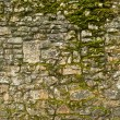 Old stone texture wall with moss — Stock Photo