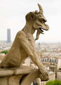 Chimera of Notre Dame de Paris. — Stock Photo