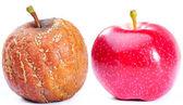 Två äpplen — Stockfoto