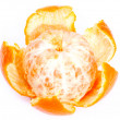 Stock Photo: Tangerine