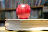Education. — Stock Photo