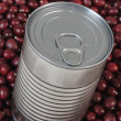 Stockfoto: Canned food.