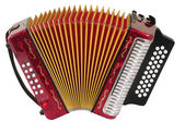 Accordion. Isolated — Stock Photo