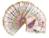 Currencies. Isolated — Stock Photo