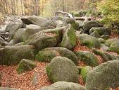 Rocks — Fotografia Stock