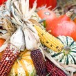 Fall Decoration — Stock Photo #2188844