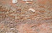 Backsteinmauer Textur — Photo