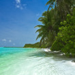 Tropical beach — Stock Photo #2410763