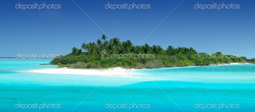 Tropical Island with Coconut Palmtrees — Foto de Stock   #2411220