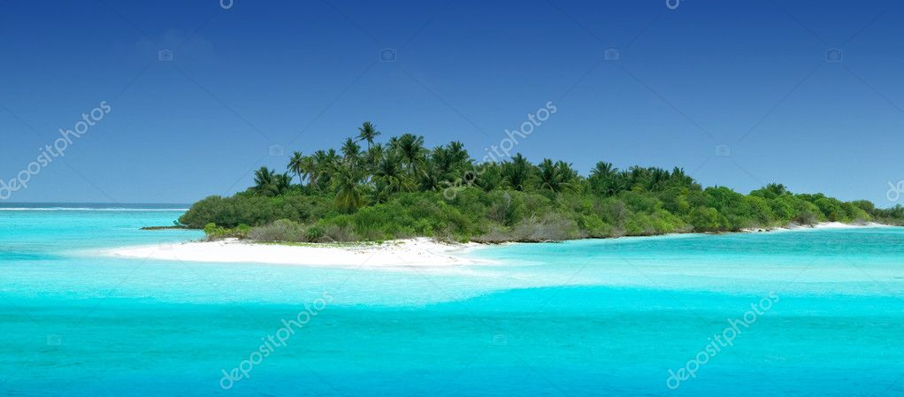 Tropical Island with Coconut Palmtrees — Stock fotografie #2411220