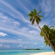 Tropical Beach — Stock Photo #2531430