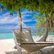 Foto de Stock  : Beach Hammock