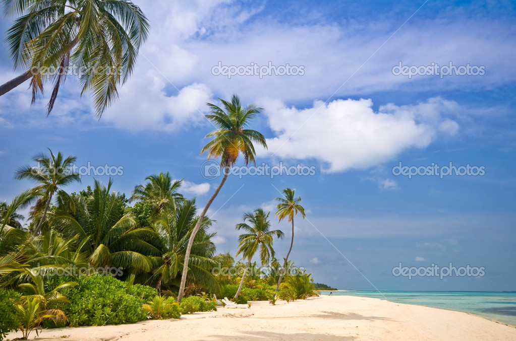 Tropical Beach — Stock Photo #2531501