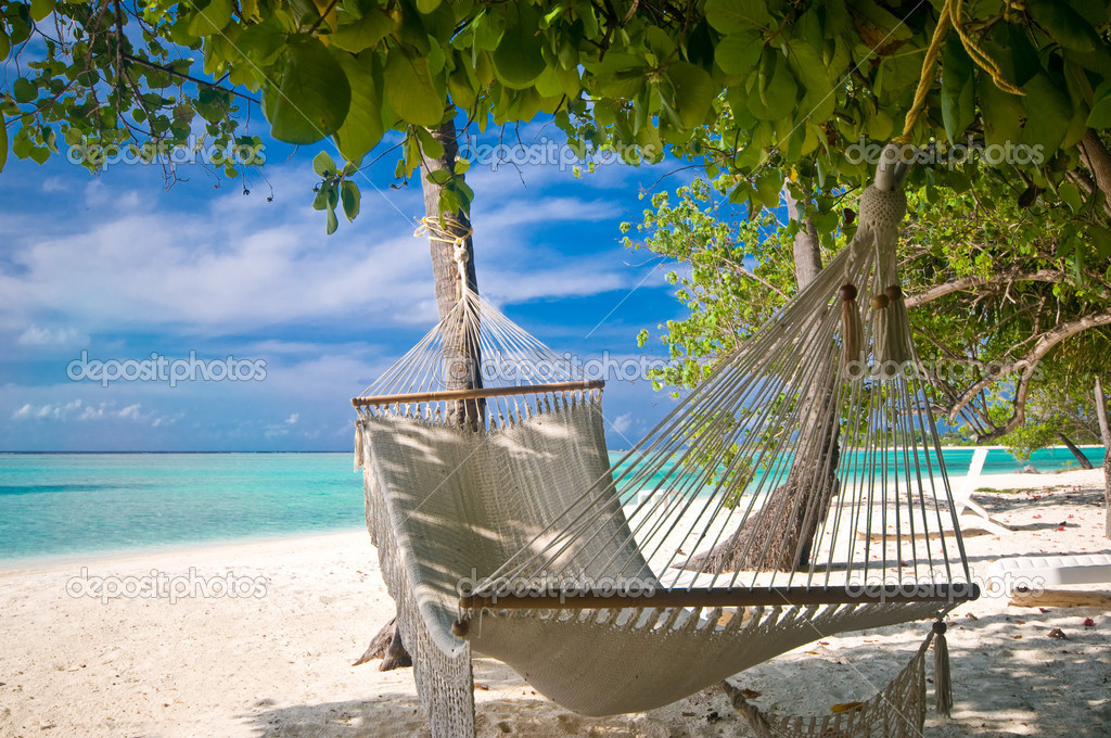 Beach Hammock under palm trees — Stock Photo #2531939