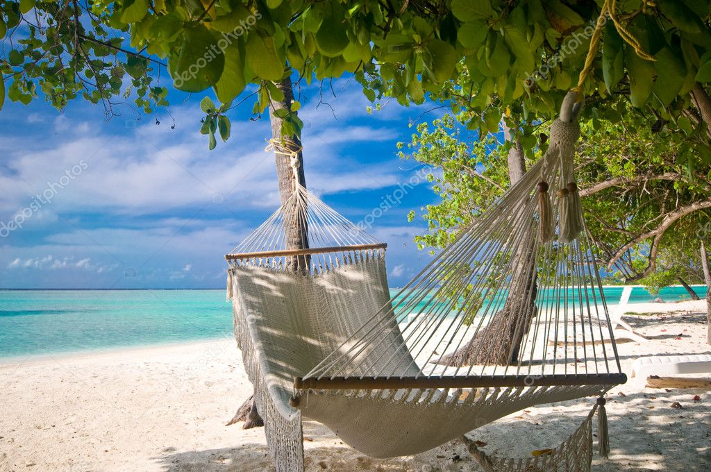 White Sand Beach Palm Tree Beach Hammock Under Palm Trees