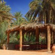 Arbor among palm trees — Stock Photo