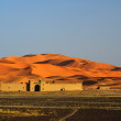 Edge of the Sahara Desert — Stock Photo