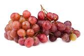 Photo of dark grapes on white — Stock Photo