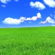 Royalty-Free Stock Photo: Panoramic view of peaceful grassland