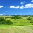 Summer landscape with cumulus clouds — Stock Photo