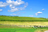 Country view with fields and fences — Stock Photo