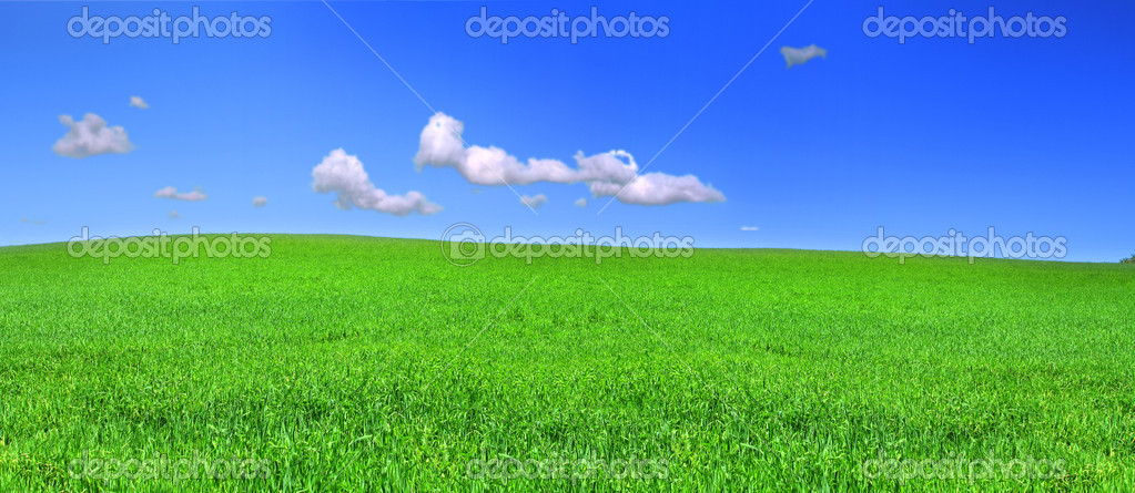 Beautiful panoramic view of peaceful grassland, blue sky above — Stock Photo #2203470