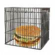 Diet concept - fast food behind bars — Stock Photo