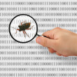Concept of searching for a bug - Stock Photo