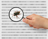 Concept of searching for a bug — Stock Photo