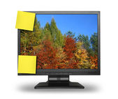 Lcd with fall wallpaper — Stock Photo