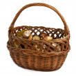 Basket full of wild mushrooms - Stock Photo