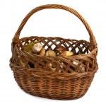 Basket full of wild mushrooms — Stock Photo #2229595