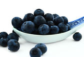 Spoonful of blueberries — Stock Photo