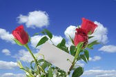 Heavenly roses with blank note — Stock Photo