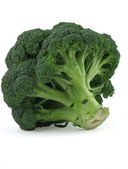 Appetizing broccoli on white background — Stock Photo