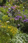 Flourish garden — Stock Photo