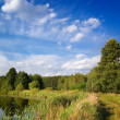 Blue sky over the lake and trees — Stock Photo