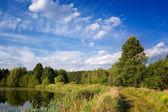 Blå himmel över sjön och träd — Stockfoto