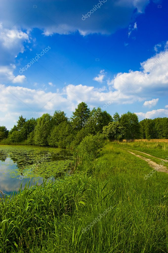 Photo of the beautiful lake in the countryside — Stock Photo #2593467
