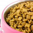 Dog food — Stock Photo #2622752