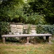 Old Bench with wall and ivy — Stock Photo #2213210