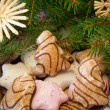 Christmas cookies with fir branches — Stock Photo