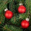 Three red Christmas tree balls — Stok fotoğraf