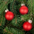 Three red Christmas tree balls - 图库照片