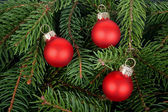 Three red Christmas tree balls — 图库照片
