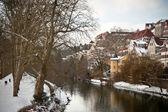 Tubingen seen from the river Neckar — Stock Photo
