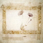Grunge Background with poppy blossoms — Stock Photo